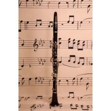 Couesnon Monopole Clarinet. Paris