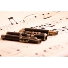Flute 6 keys