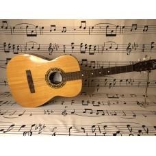 EKO STUDIO L Guitar.